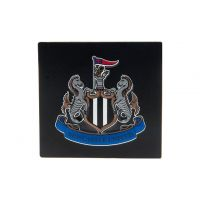 Newcastle United magnet na ledničku